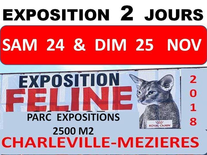 Charleville 2019
